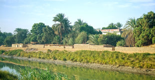 Egypt. Oasis next to Nile river Royalty Free Stock Images