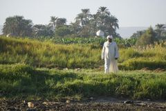 Old man in white robe on the shore of the Nile royalty free stock images