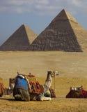 egypt ostrosłupy Fotografia Royalty Free
