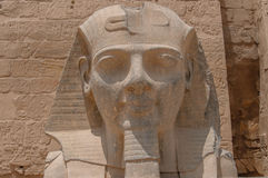Egypt in Pictures Royalty Free Stock Photography