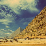 Egypt pyramids in Giza Cairo - vintage retro style Royalty Free Stock Photos