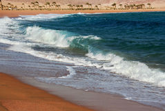 Egypt. Red  sea Royalty Free Stock Photo