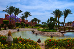 allinclusive beach beautiful coast day egypt  Stock Photos