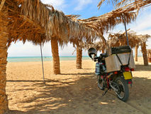 Egypt. Red Sea coast. Stock Image