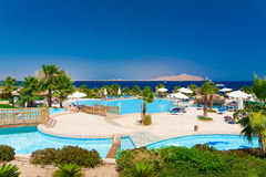 Egypt. Red sea day. Beach, pool, palms Stock Image