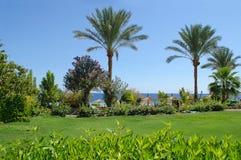 Egypt, Red Sea. Sharm el-Sheikh. Hotel Royal Grand Sharm. Egypt, Red Sea. Landscaping. Sharm el-Sheikh Stock Image