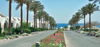 Egypt Resort Area Of Sharm El Sheikh Stock Photos