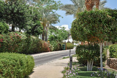 Egypt Resort Area Of Sharm El Sheikh Royalty Free Stock Images