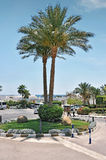 Egypt resort area of Sharm El Sheikh Royalty Free Stock Image