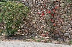 Egypt resort area of Sharm El Sheikh Stock Image