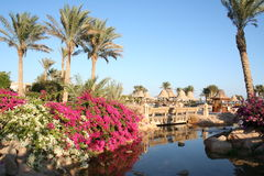 Egypt. Resort Sharm-El-Sheikh Stock Photos