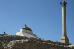 Egypt's Alexandria Pompeii column Royalty Free Stock Photo