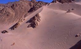 Egypt: Sinai-Desert and Sanddunes near Dahab. Egypt: Sanddunes in the Sinai-Desert near Dahab, where you can try sandsurfing downhill Stock Photos