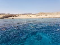 Snorkling. Egypt sea snorkling Royalty Free Stock Images