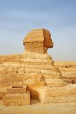 Egypt sphinx Royalty Free Stock Image