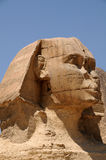 Egypt. A sphinx against a pyramid. Sphinx against a pyramid in Giza Stock Photography