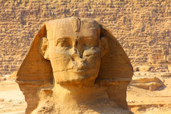 Egypt sphinx face and pyramid in Giza Royalty Free Stock Photo