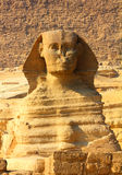 Egypt sphinx and pyramid in Giza Royalty Free Stock Image