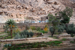 Egypt, St. Catherines Monastery, cloister garden Royalty Free Stock Images