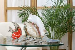 Egypt still life. Still life with a large shell, glass fish, necklace made of shells, sand and pebbles all on a glass table with a palm and home interrior in the Stock Images
