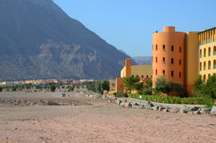 Egypt, Taba. Oasis in the desert Stock Photography