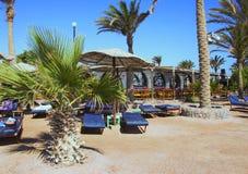 Egypt tropical beach Royalty Free Stock Photo