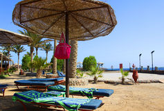 Egypt tropical beach Royalty Free Stock Images