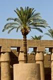 Egypt Palm in Temple of Karnak Stock Photos