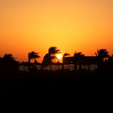 egypt zmierzch Fotografia Royalty Free