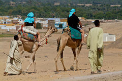 Egypte - τουρίστες που οδηγούνται από τους οδηγούς καμηλών έξυπνη στοκ εικόνα