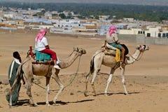 Egypte - τουρίστες που οδηγούνται από τους οδηγούς καμηλών έξυπνη στοκ εικόνες