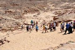Egypten öknen av den Sinai halvön, färgad kanjon Royaltyfria Foton