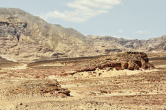 Egypten bergen av Sinaien deserterar Royaltyfria Bilder