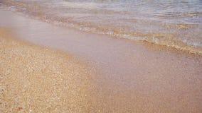 Egypten Röda havet, guld- sandstrand med Crystal Clear Water Soft Waves i ultrarapid stock video