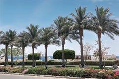 Egypten semesterortområde av Sharm el Sheikh Royaltyfri Bild