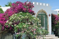 Egypten semesterortområde av Sharm el Sheikh Royaltyfria Bilder