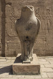 Egypten tempel Royaltyfri Foto