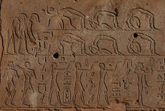 Egyptian Acrobats. In a bas-relief from Hatshepsut?s Red Chapel in Karnak Temple near Luxor (Thebes), Egypt Royalty Free Stock Photos