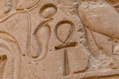 Egyptian ancient hieroglyphs on the stone wall. Closeup of the symbol of eternal life ankh. Egyptian ancient hieroglyphs on a stone wall. Closeup of symbol of royalty free stock images