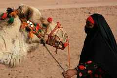 Egyptian bedouin with camel. Closeup portrait Royalty Free Stock Image