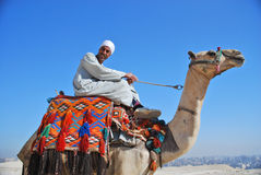 Egyptian camel rider Royalty Free Stock Images