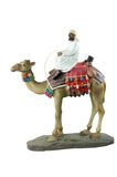 Egyptian camel rider Royalty Free Stock Photo