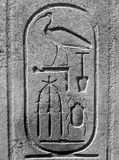 Egyptian cartouche in B/W. Pharaoh's cartouche Royalty Free Stock Image