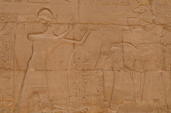 Egyptian Carvings at the Temple of Luxor stock photography