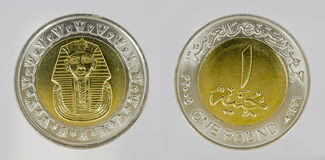 Egyptian coin Stock Images