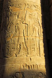 Egyptian column. S details in the Luxor Temple Stock Photography