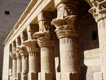 Egyptian columns Royalty Free Stock Image