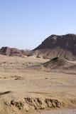 Egyptian desert. Stock Photos
