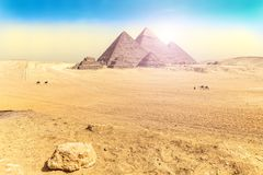 Egyptian desert scenery with the Great Pyramids of  Giza stock photo