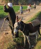 Egyptian farmer Stock Photos